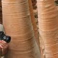 Le 8 Mai aux Buissonnets : Cédric Pollet expose ses oeuvres photographiques et AMAVICA organise un concours autour du thème de l'Arbre