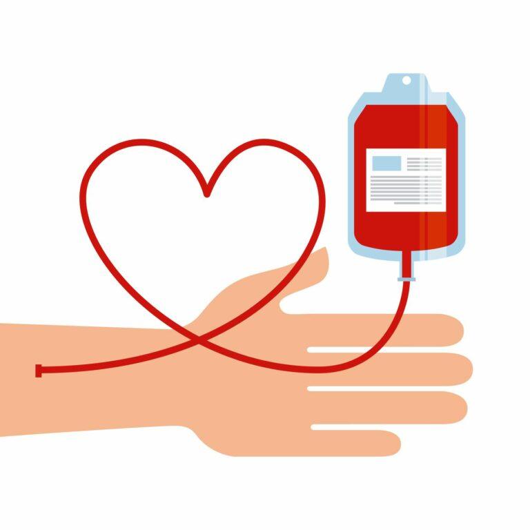 Le Don du sang aux Buissonnets : 4 élèves de Terminale ont géré ce projet.