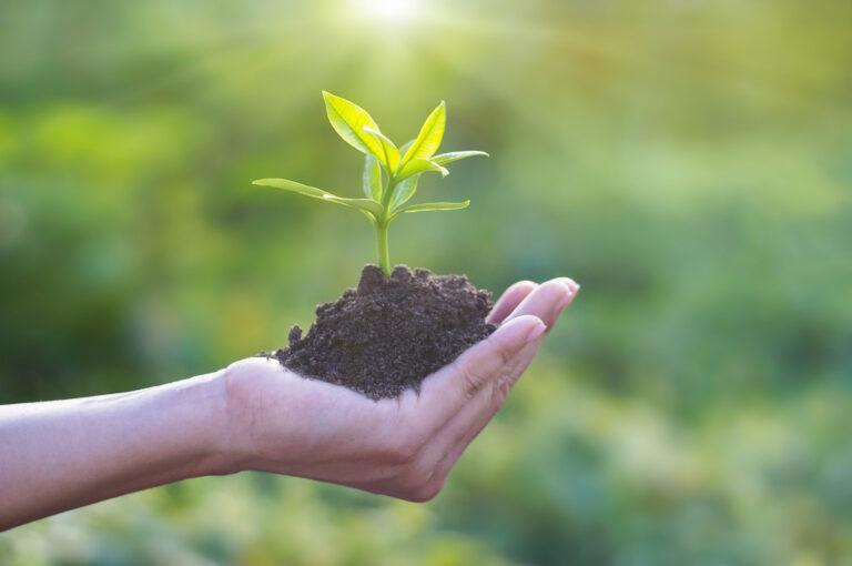 Read more about the article Une rentrée sous le signe du Développement Durable