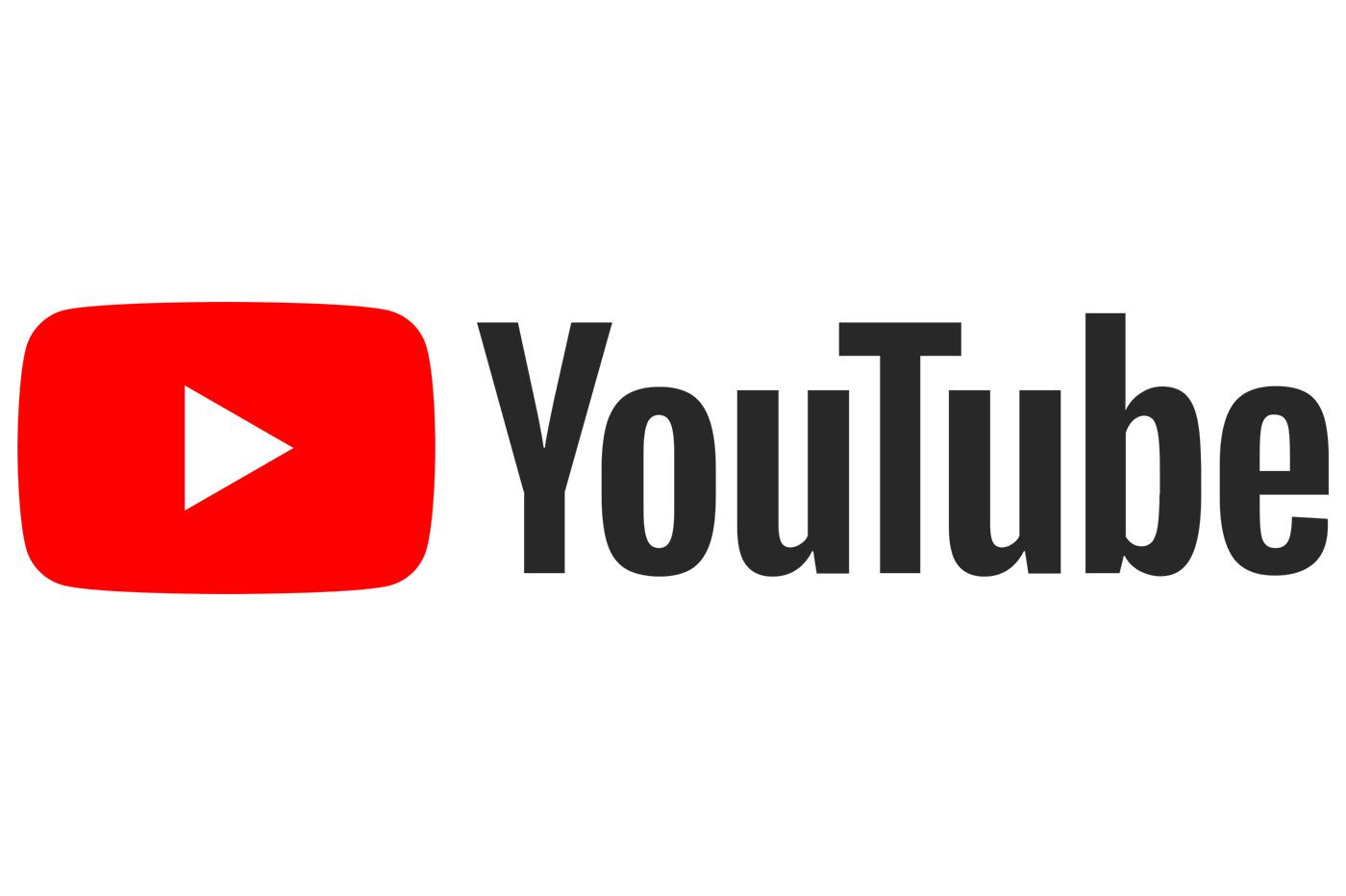 Lancement de la chaîne Youtube des Buissonnets !